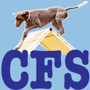 CFS button_edited-1